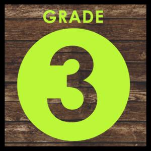 GRADE LEVEL - 3rd Grade